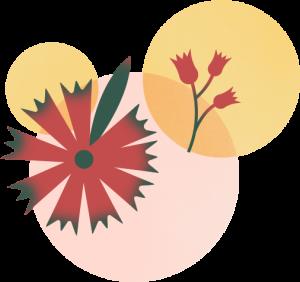 SPRIG_Styled-Blooms